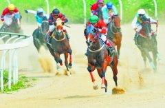 武汉速度赛马公开赛迎来法国赛马日(图